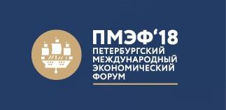 Директор ИГСУ Игорь Барциц выступил на Петербургском экономическом форуме