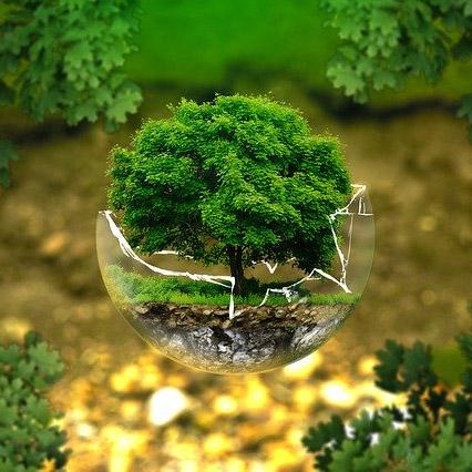 """Оценка состояния окружающей среды и роль национального проекта """"Экология"""" в обеспечении устойчивого развития России"""