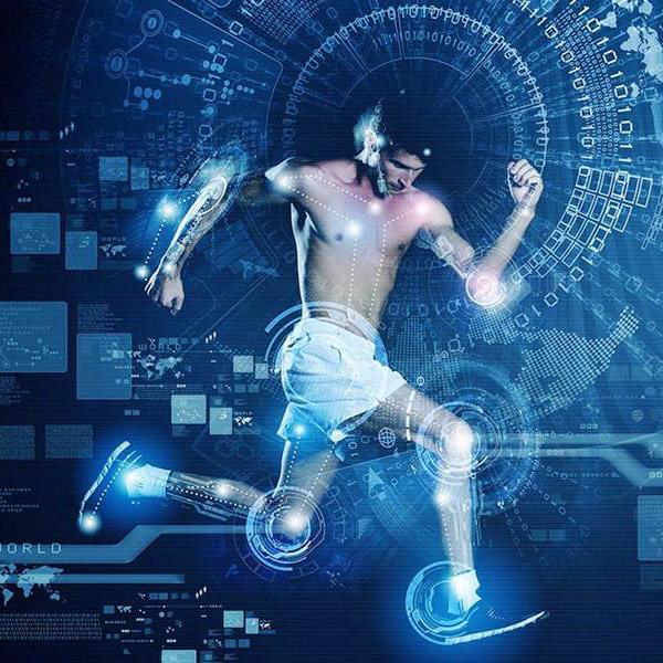 Цифровизация в сфере физической культуры и спорта